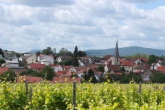 Gemeinde_0028-scaled