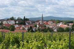 Gemeinde_0027-scaled