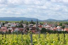 Gemeinde_0032-scaled