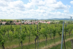 Gemeinde_0033-scaled