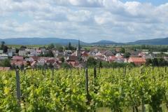 Gemeinde_0035-scaled