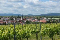 Gemeinde_0037-scaled